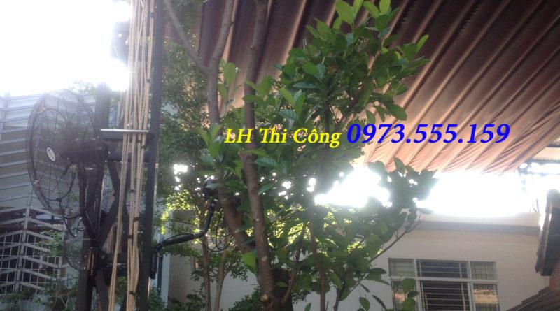Mái Bạt Quán Cafe đẹp 0973555159